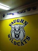 Vaughn 2